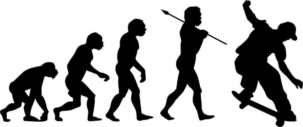 evolucion del skate