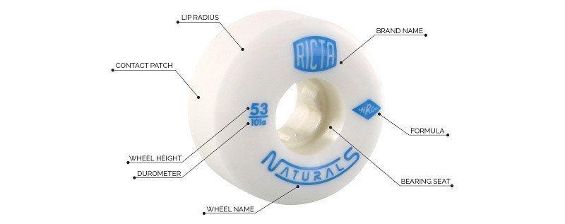 diagrama rueda skate